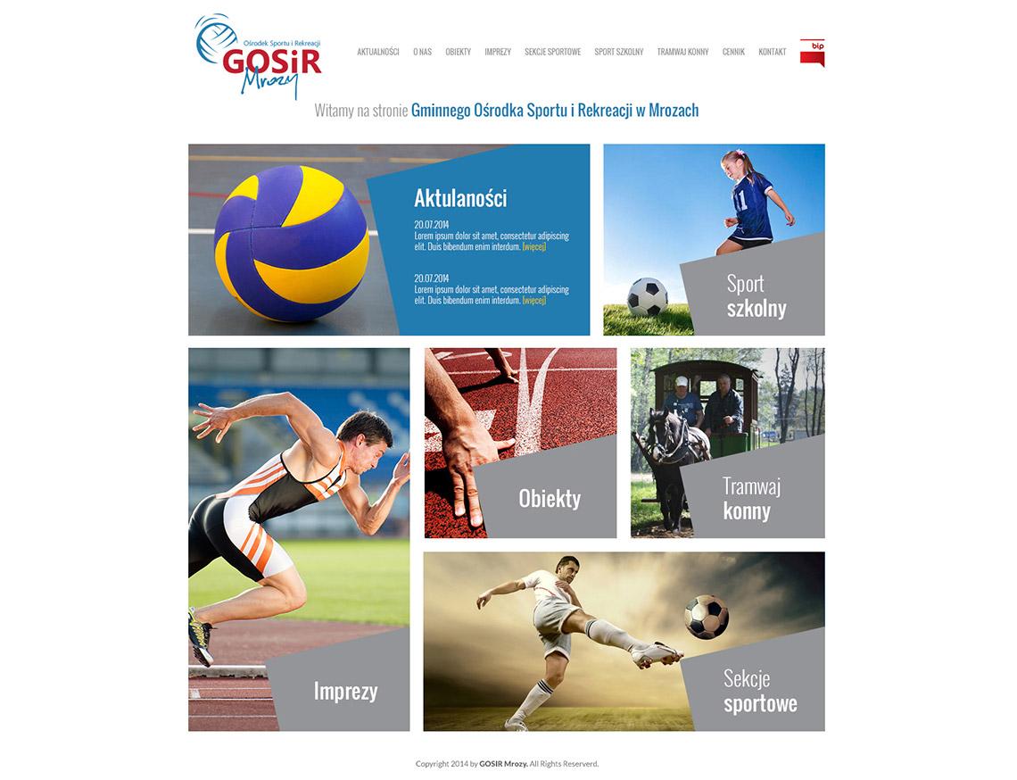 projekt logo www gosir mrozy